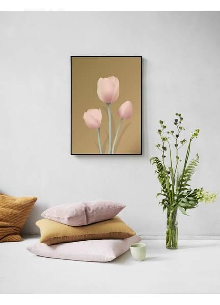 Bilde av PLAKAT - Tulipan Amber - Vissevasse